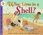What Lives in a Shell book