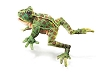 Leopard Frog Hand Puppet by Folkmanis Puppets  MPN 2587