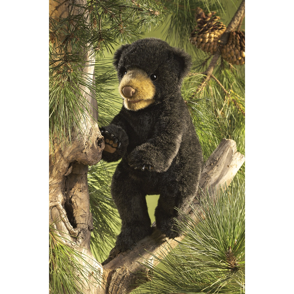 Black Bear Cub Puppet By Folkmanis Puppets 2831