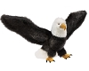Bald Eagle Bird Hand Puppet by Folkmanis Puppets