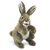 Hare Rabbit Puppet by Folkmanis Puppets 3164
