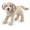 Labradoodle Dog Puppet by Folkmanis 3136