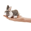 Bunny Rabbit Finger Puppet by Folkmanis
