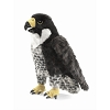 Peregrine Falcon Bird Hand Puppet by Folkmanis